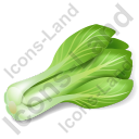 Vegetable Bok Choy Icon