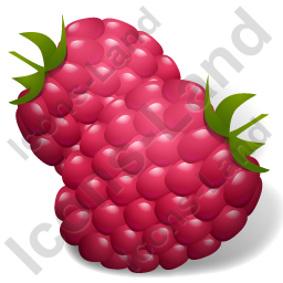 Berry Raspberry Icon