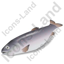 Fish Trout Icon