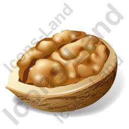 Nut Walnut Icon