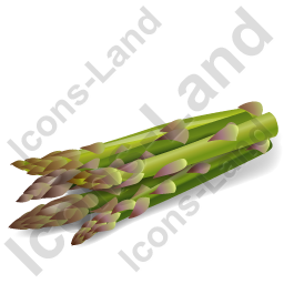 Vegetable Asparagus Icon