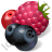 Berries Icon, PNG/ICO, 48x48
