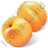Fruit Apricot Icon