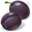 Fruit Plum Icon