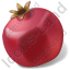 Fruit Pomegranate Icon