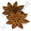 Fruit Star Anise Icon