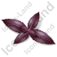 Herb Purple Basil Icon