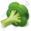 Vegetable Broccoli Icon