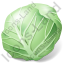 Vegetable Cabbage Green Icon