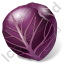 Vegetable Cabbage Purple Icon