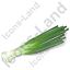 Vegetable Green Onion Icon