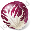 Vegetable Radicchio Icon