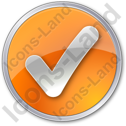 Checked Circle Orange Icon