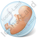 Embryo Icon