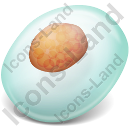 Cell 1 Icon, PNG/ICO, 256x256