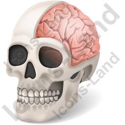 Skull Brain Icon, PNG/ICO, 256x256