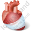 Heart Injury Icon, PNG/ICO, 64x64