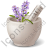 Pharmacy Herbs Icon