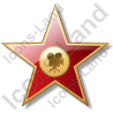 Award Star Icon
