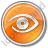 Observation Circle Orange Icon