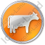 Cow Circle Orange Icon, PNG/ICO, 64x64