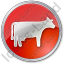 Cow Circle Red Icon
