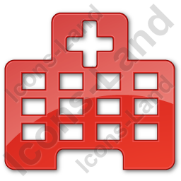 Hospital Facility Plain Red Icon