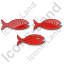 Fish Hatchery Plain Red Icon