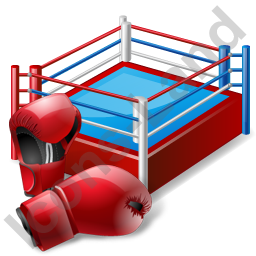 Boxing Ring Gloves Icon