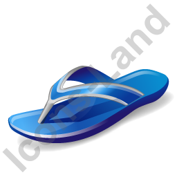 Swimming Shoes Icon