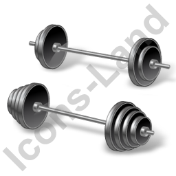 Weight Training Barbell Icon, PNG/ICO, 256x256