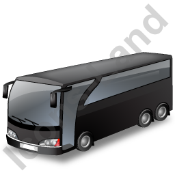Coach Black Icon