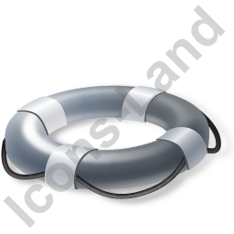 Lifebuoy Grey Icon
